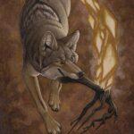 No Trace Bushcraft - Hoe Coyote het Vuur stal